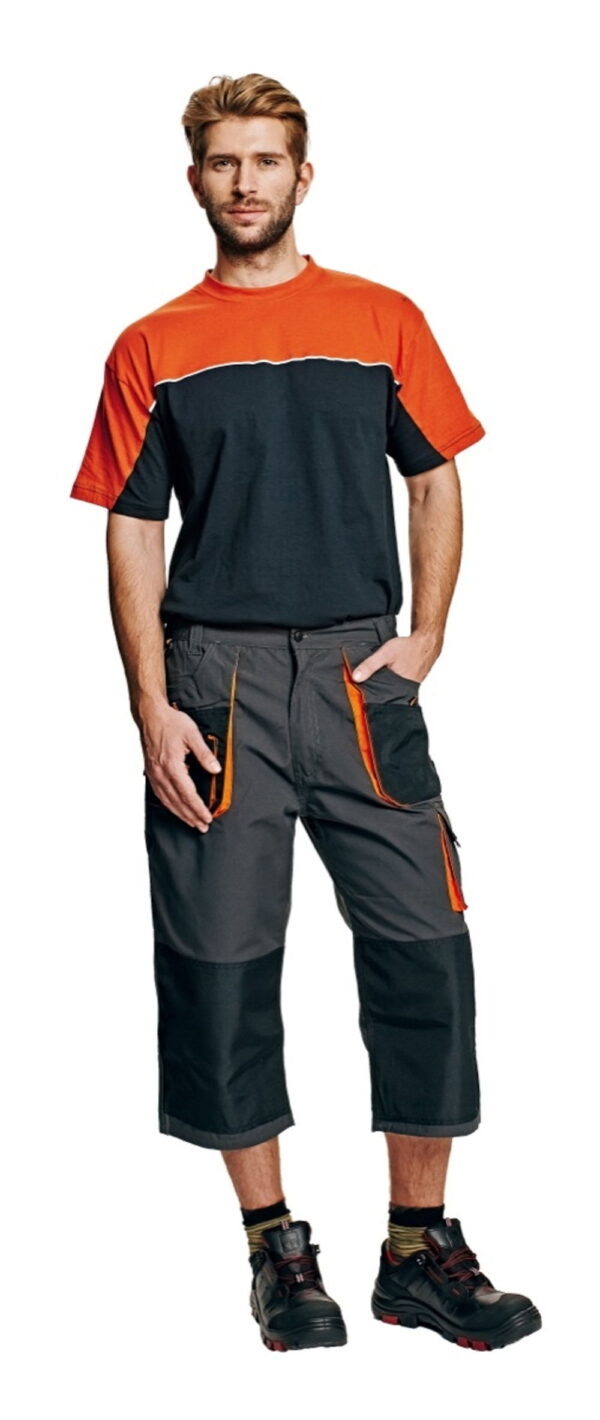 EMERTON 3/4 pants